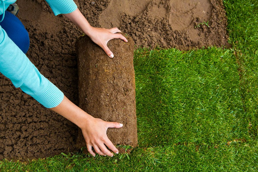 laying sod - landscaping-ideas